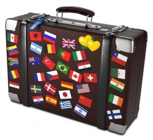 expat-valise
